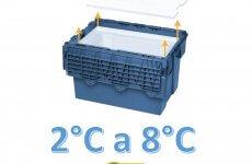 caixa para vacinas resfriamento