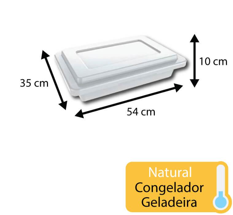 caixa plastica para congelamento 10 litros com tampa