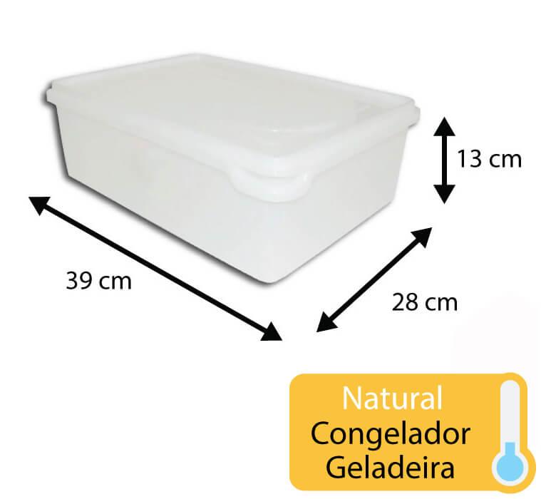 caixa plastica para congelamento 11 litros