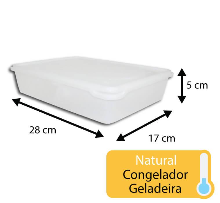 caixa plastica para congelamento 1,5 litros