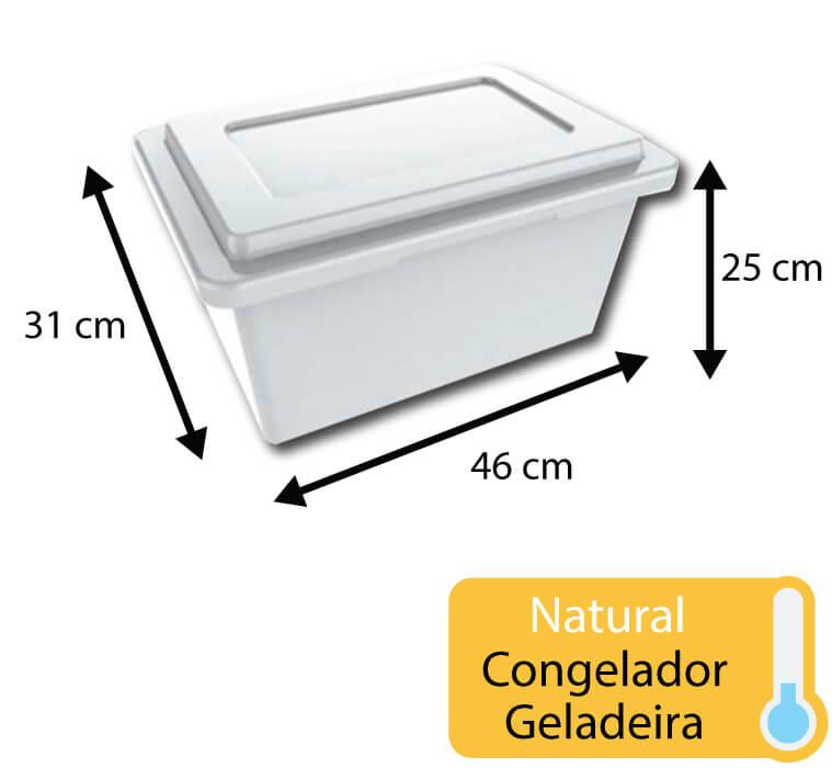 caixa plastica para congelamento 20 litros