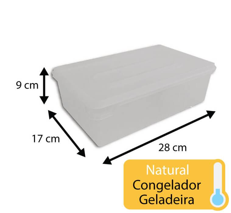 caixa plastica para congelamento 3,5 litros