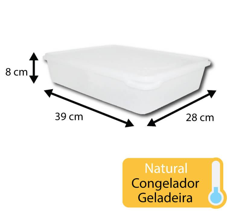 caixa plastica para congelamento 6 litros