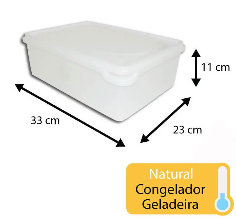 caixa plastica para congelamento 6,5 litros