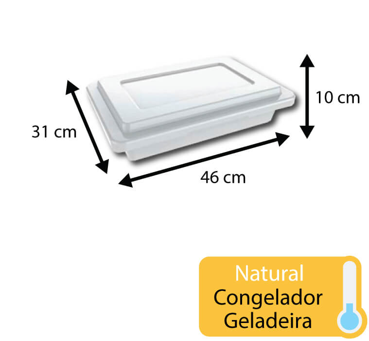 caixa plastica para congelamento 7 litros com tampa